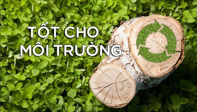 Viên nén gỗ sinh khối là một nguyên liệu đốt bảo vệ môi trường