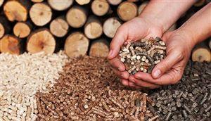 Thị trường viên gỗ nén xuất khẩu tại Việt Nam: Cơ hội và thách thức