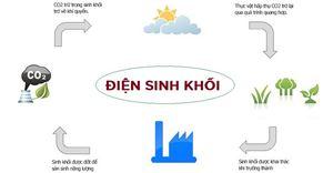 Điện sinh khối là gì? Các nhà máy điện sinh khối tại Việt Nam