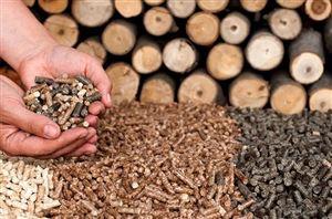 Hút ẩm an toàn với ứng dụng của viên nén gỗ