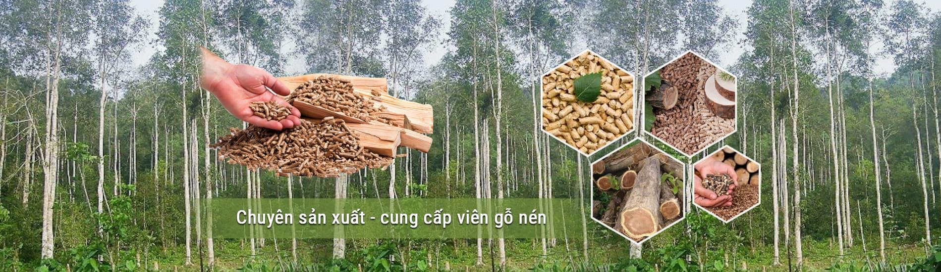 Vien Nen Go Nang Luong AT